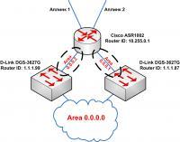 scheme_ospf.jpg