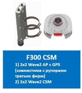 F300 CSM GPS.png